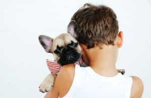 pet cremation in St. Louis, MO